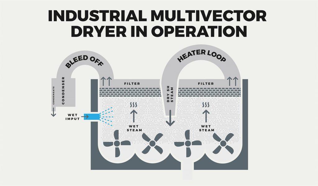 Multivectorillustration_cellmark