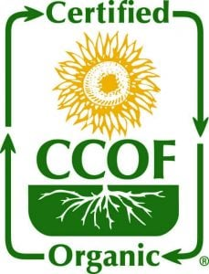 green and yellow ccof logotype