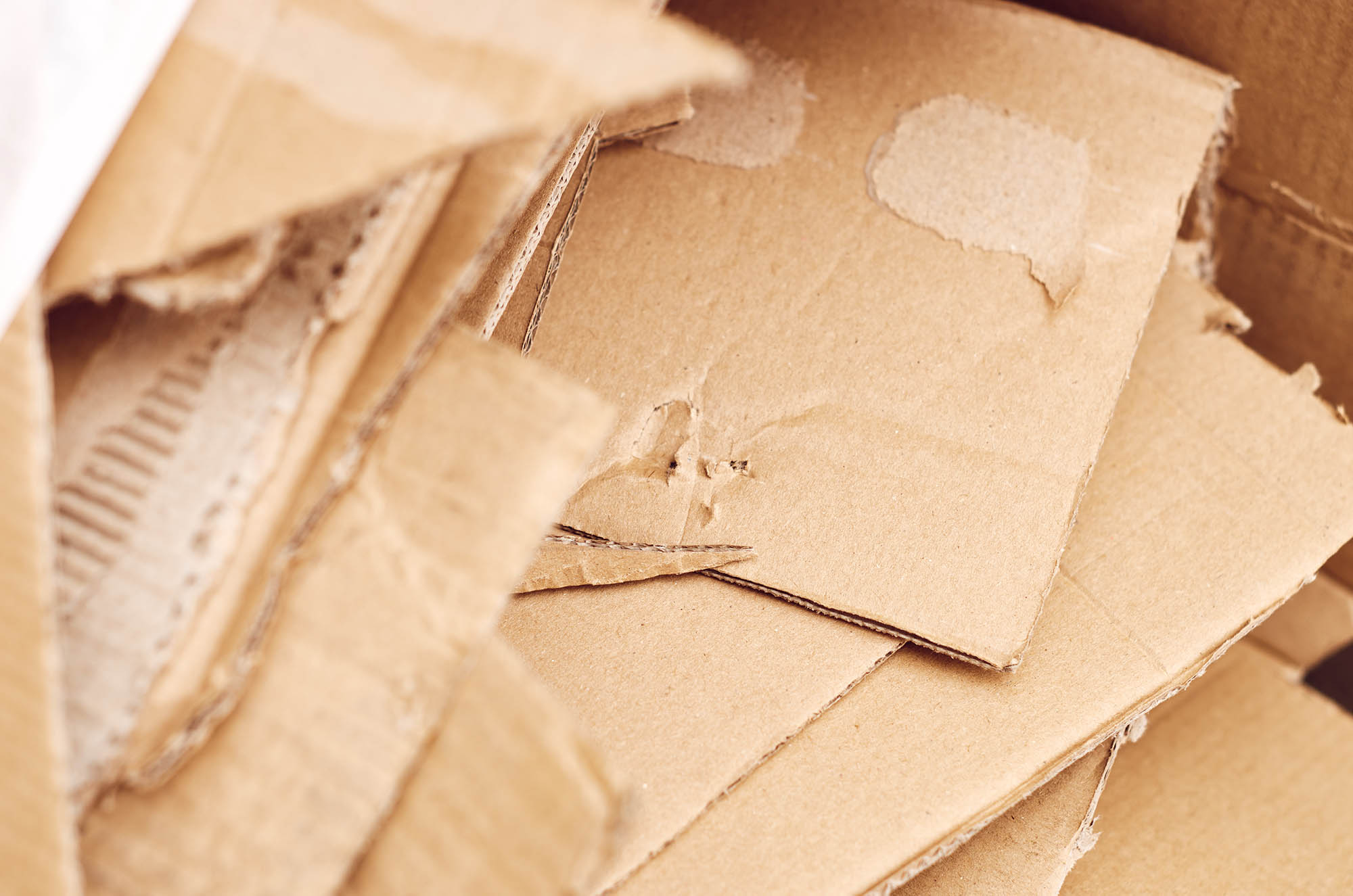 scrap of containerboard