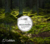 ecovadis silver rating medal 2020 on green forest background
